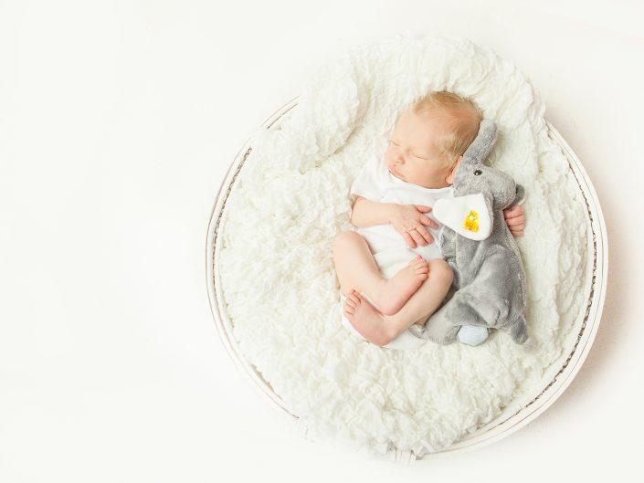 Neugeborenenfotos Esslingen