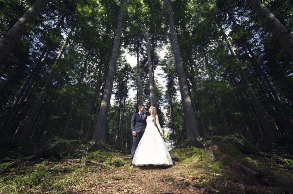 Hochzeitsfotos Ebnisee | Hochzeit Dani + Michi