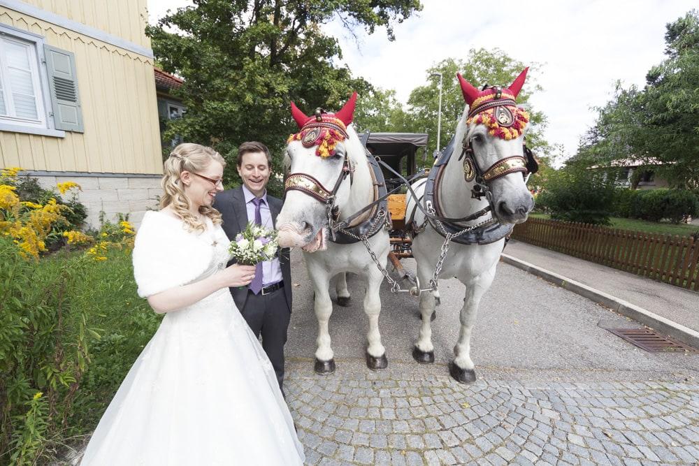 Hochzeitsfotos Ebnisee